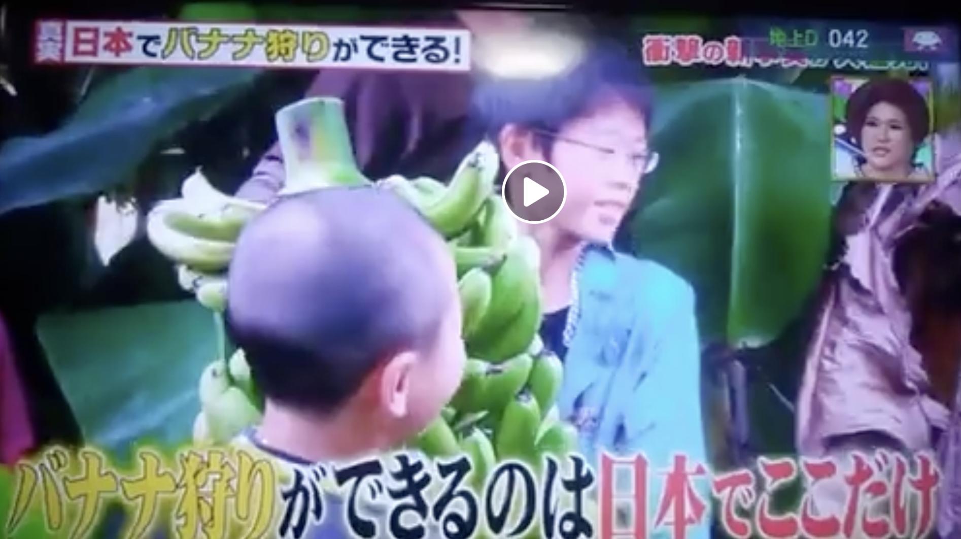 超門クイズバナナ園